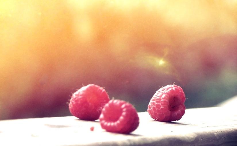 Raspberries on aLedge